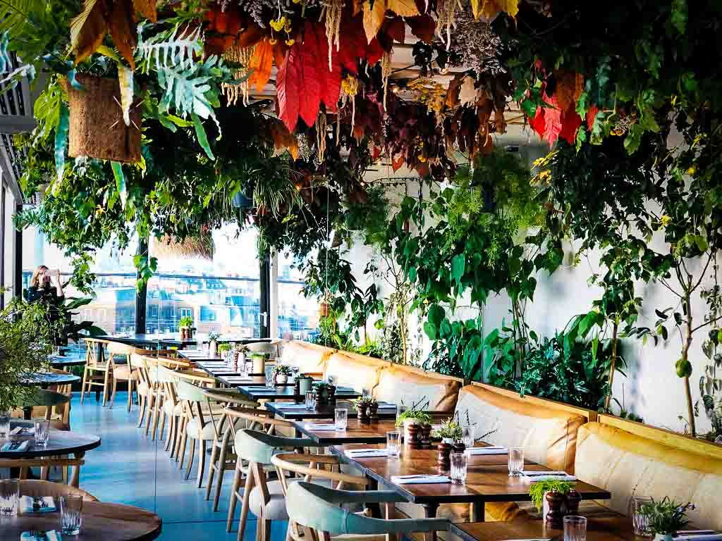 pretty rooftop restaurant in london with plants and flowers hanging from the ceiling