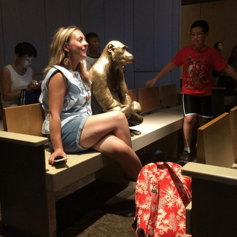 SMNH_monkey