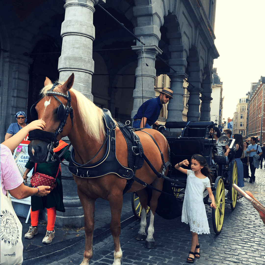 horse_drawn_tour_brussels