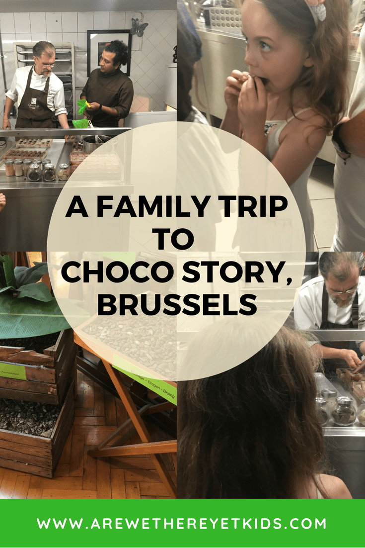 Brussels With Kids Pin