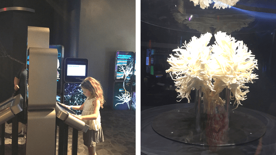 Franklin Museum Interactive