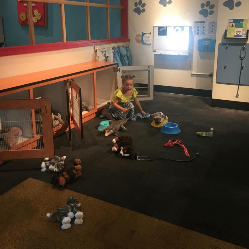 glazer_children_museum_vets