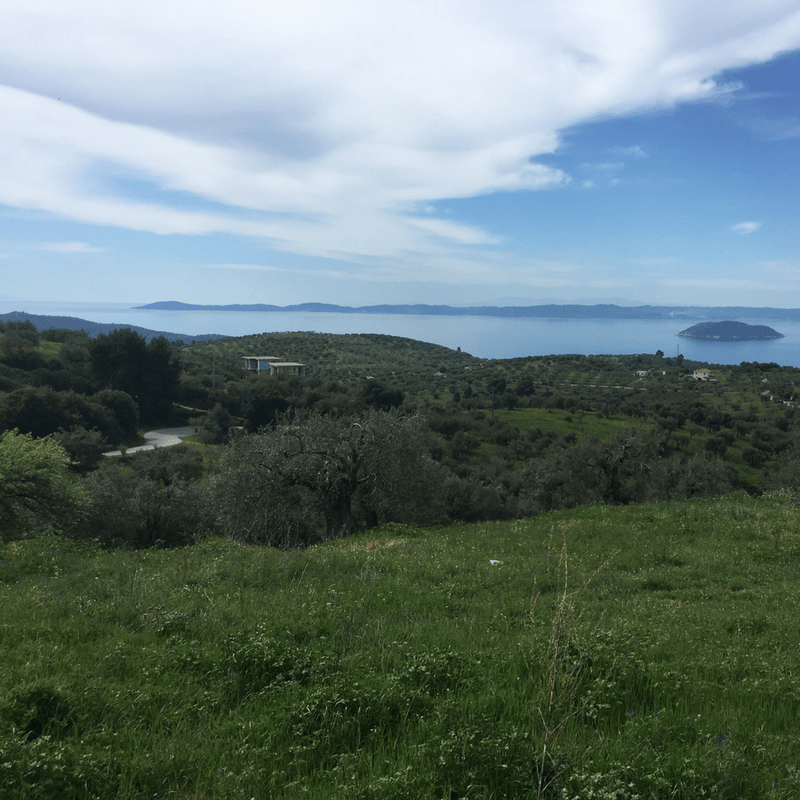 View Out To Sea In Halkidiki, Greece