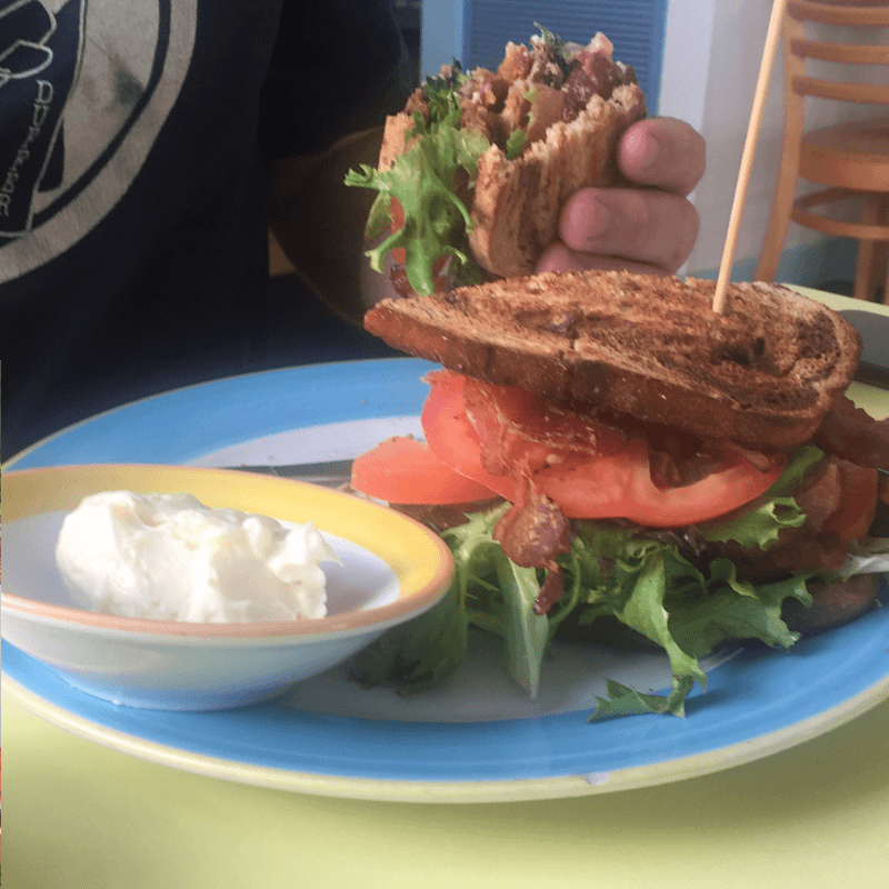 BLT sandwich at the six toed cat cafe in Key West