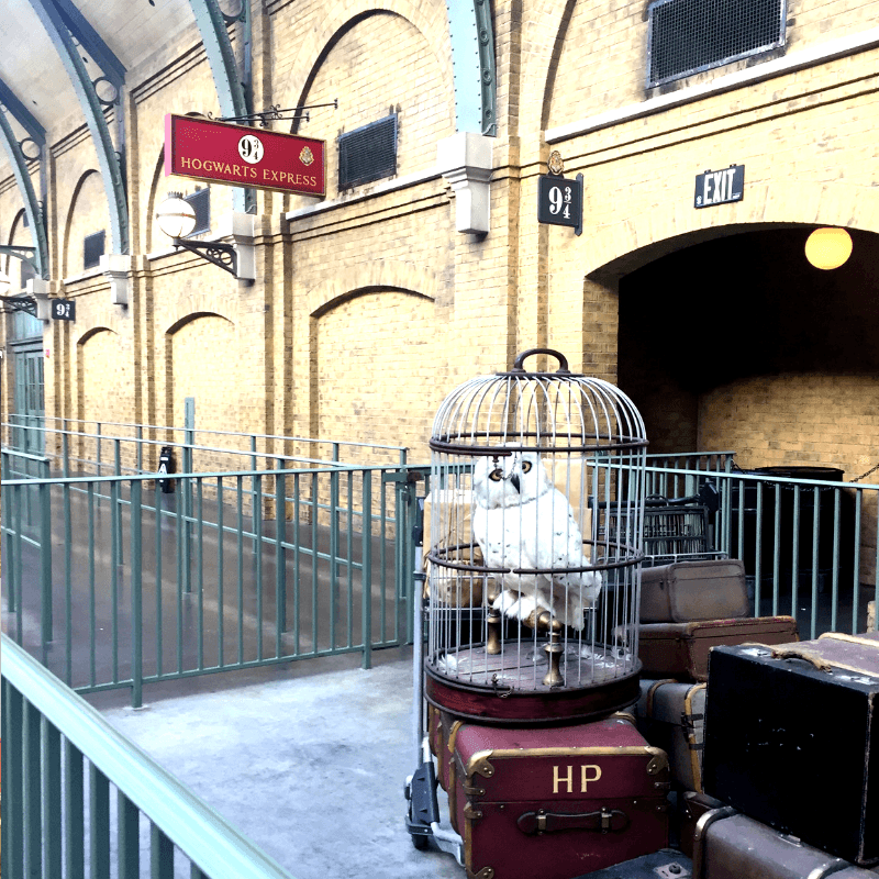 owl in a cage at platform 9 3/4 at harry potter world in orlando florida
