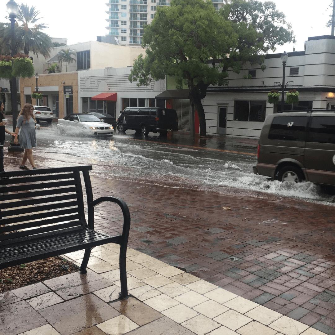 rainy streets in coconut grove miami