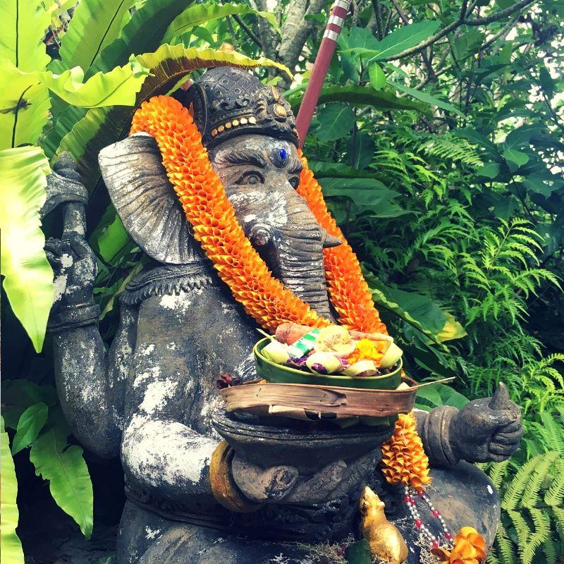 elephant offering in bali