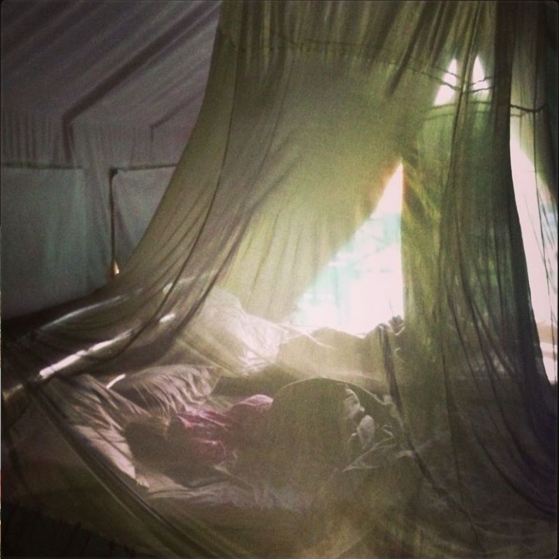 girl sleeping in large tent under mosquito net in national park near durban