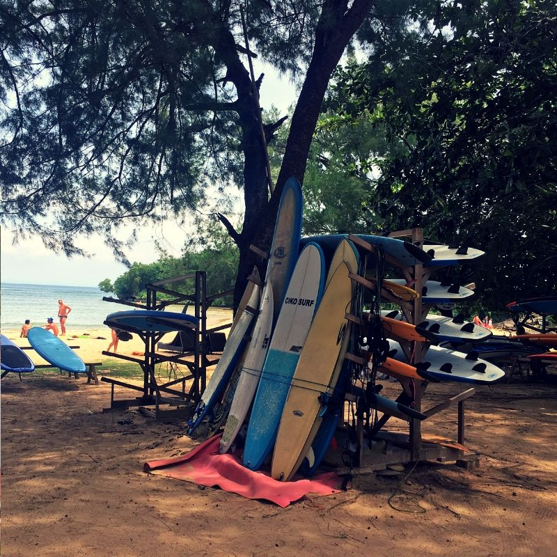 surf boards stacked against a tree in nusa dua, bali