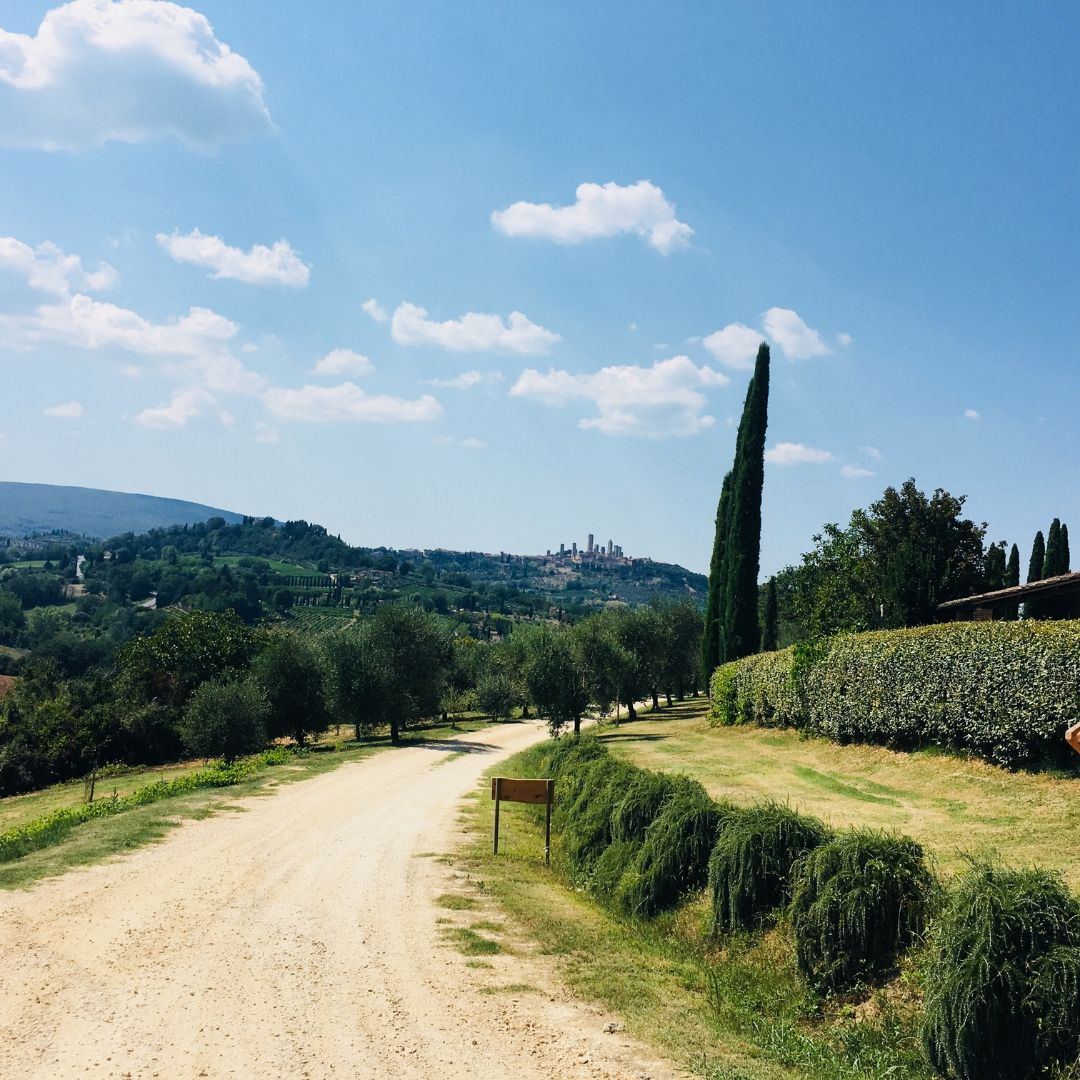 view up the hill to san gimignano in tuscany, italy