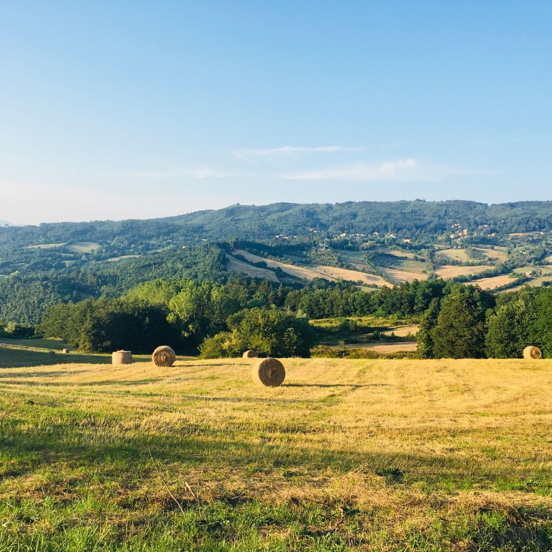 rolling countryside in Tuscany
