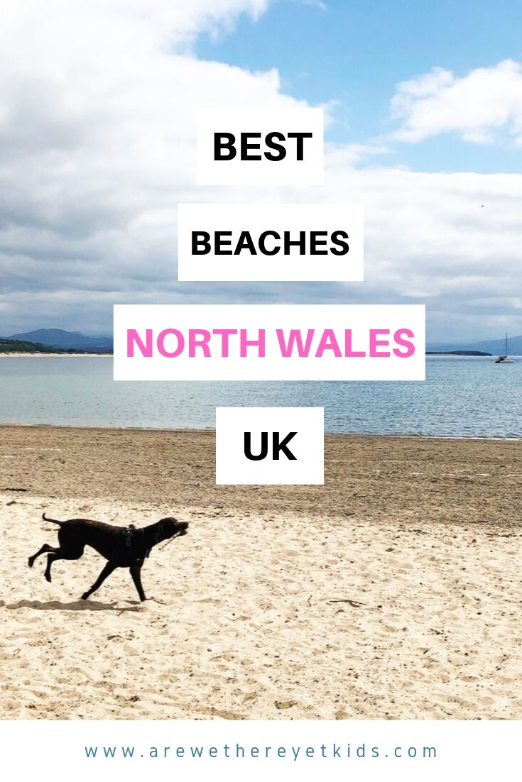 Best Beaches In North Wales For Dogs