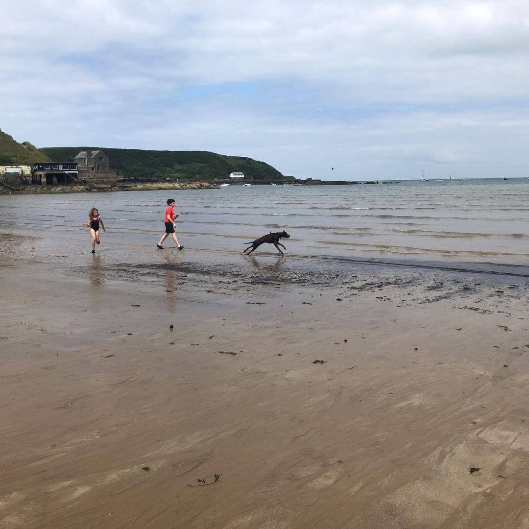 Are Dogs Allowed On Nefyn Beach