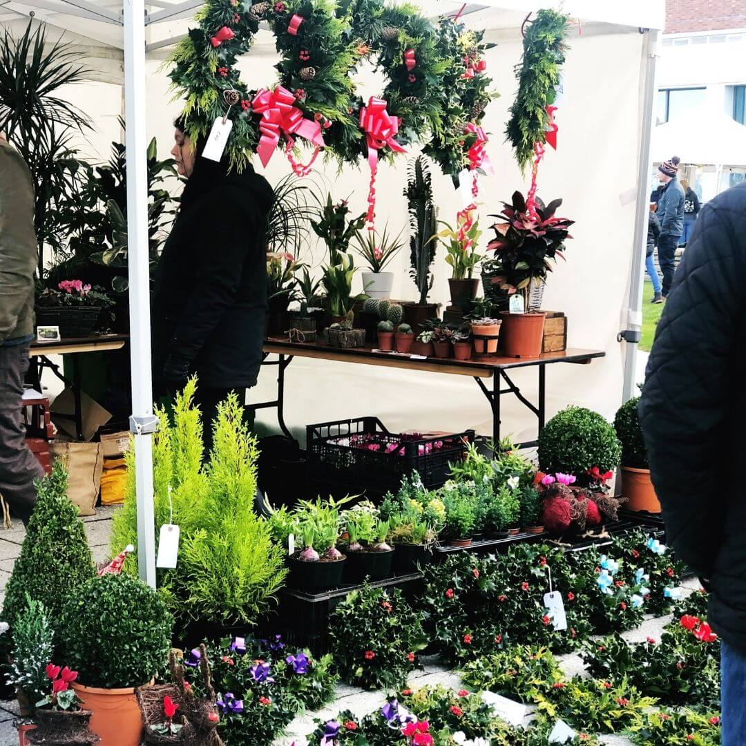 plant stall at the world of wedgwood