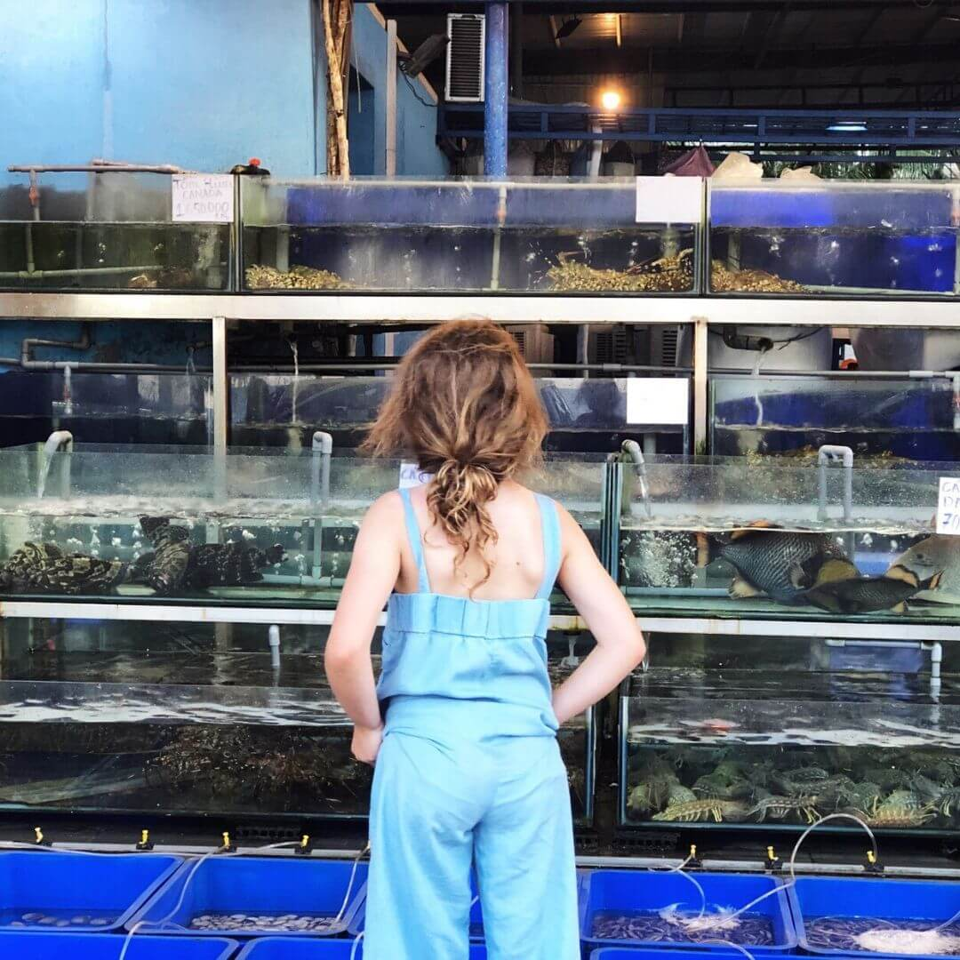 8 year old girl from behind looking at fresh seafood in tanks. Her hair is in a messy bun and she is wearing a light denim jumpsuit