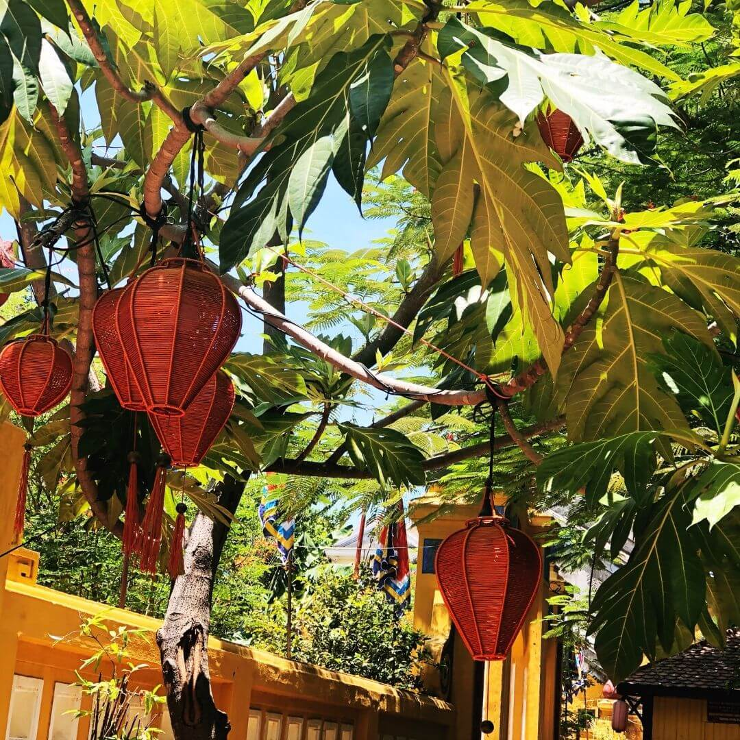 wooden lanterns hanging in a tree