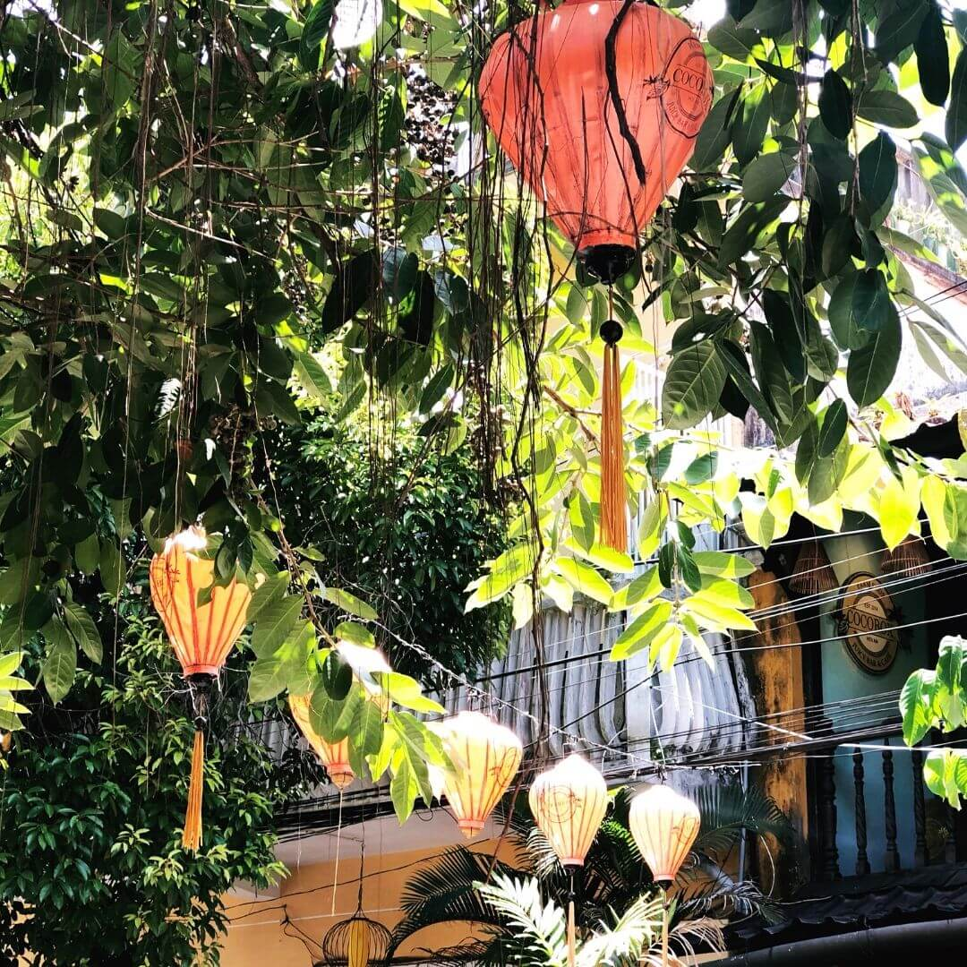lanterns in trees in hoi an