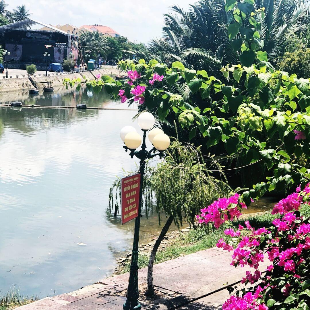 view of the river in hoi an with a street light and pink flowers in the foreground
