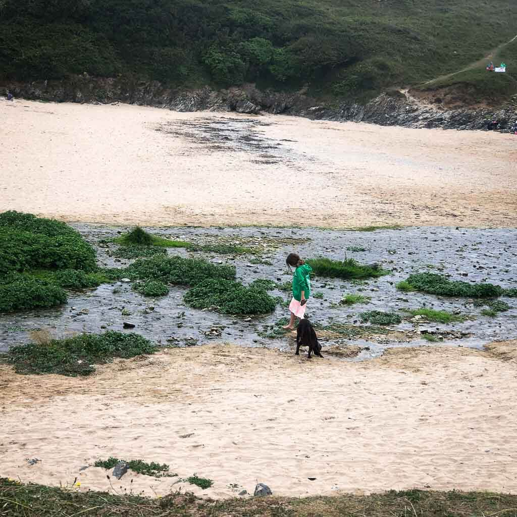 girl and dog playing in stream on sandy beach
