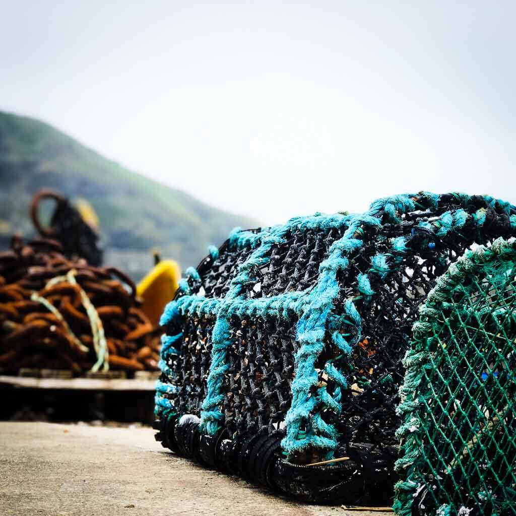Colourful Lobster Nets