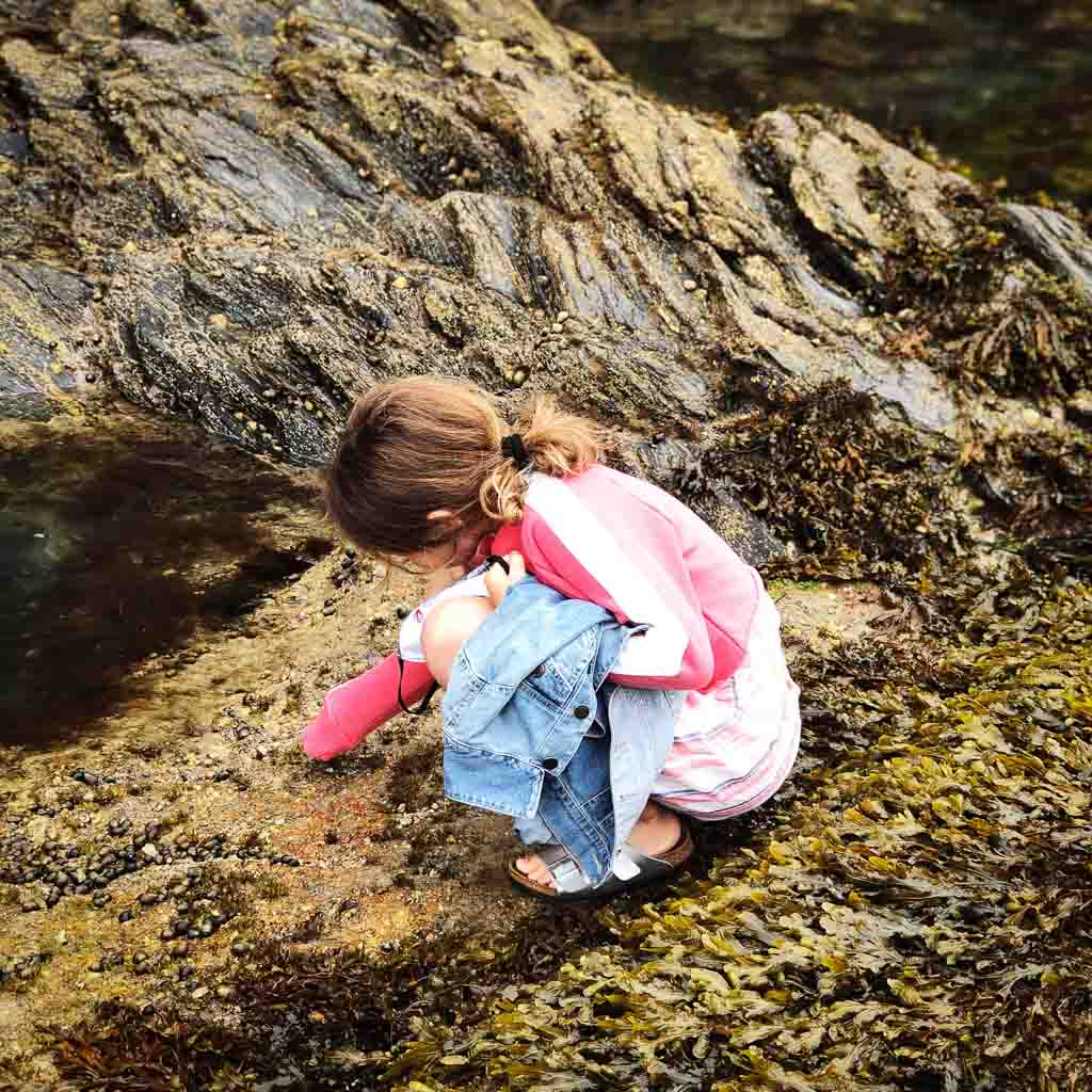 9 Year Old Girl Coached Over Looking In A Rock Pool