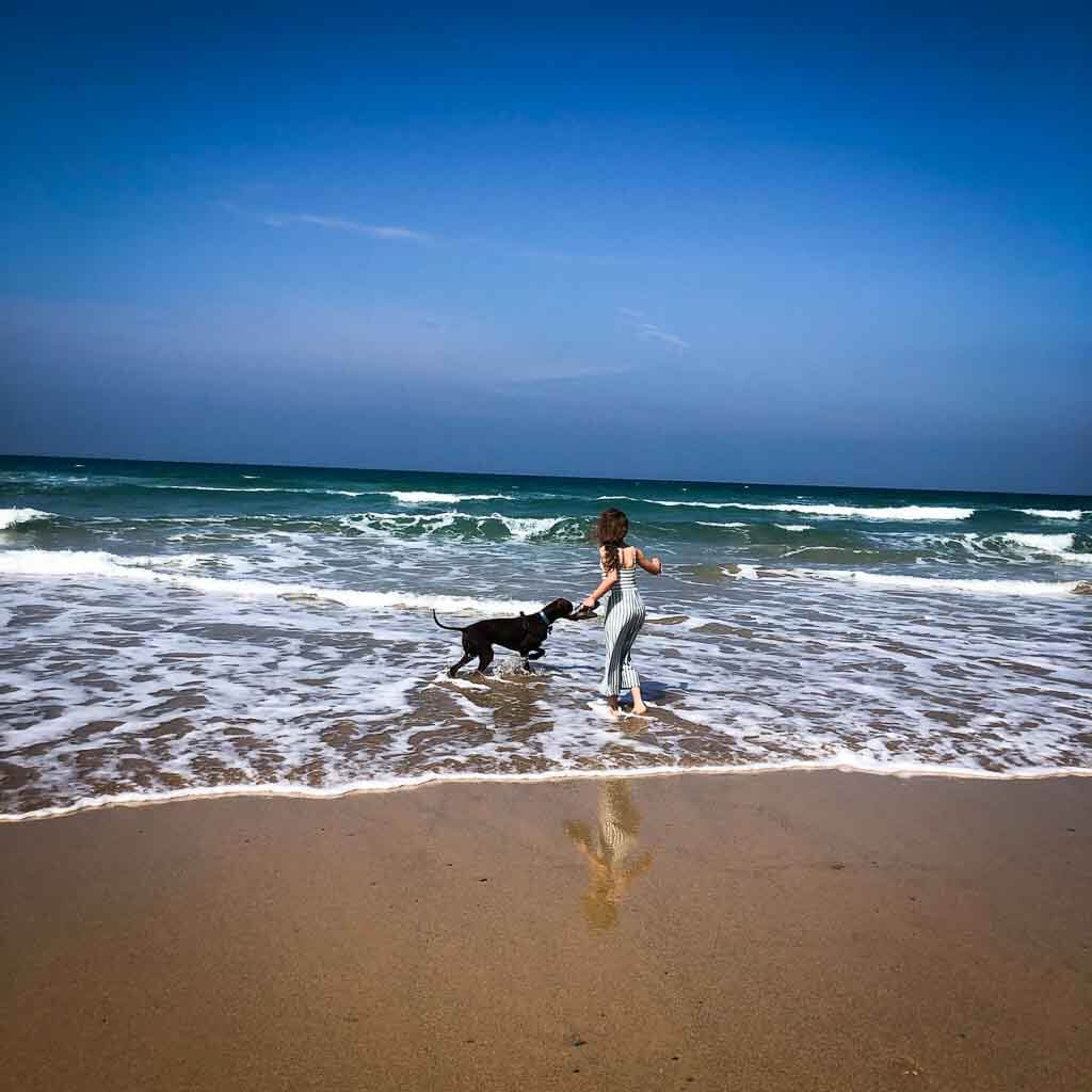 Girl And Dog Playing In Sea At Watergate Bay
