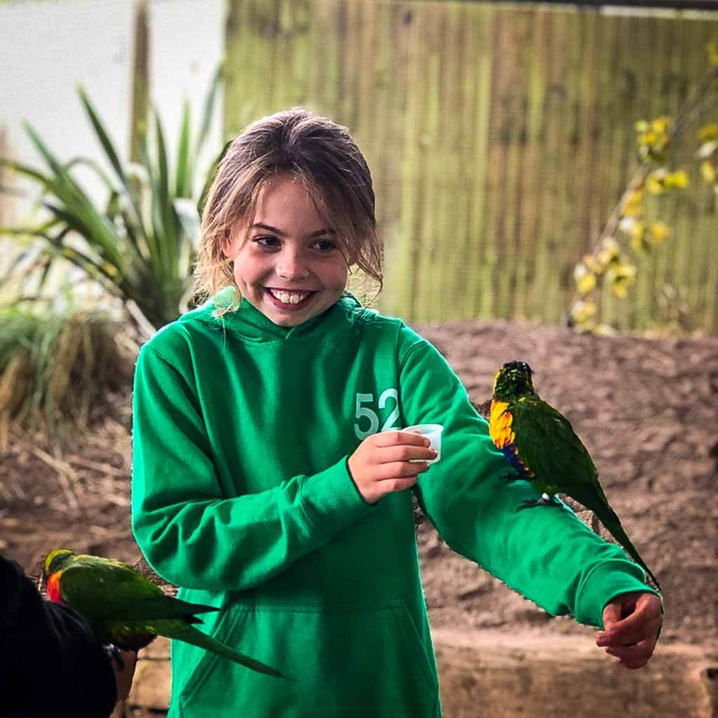 Girl In Green Jumper With Lorikeet On Her Arm