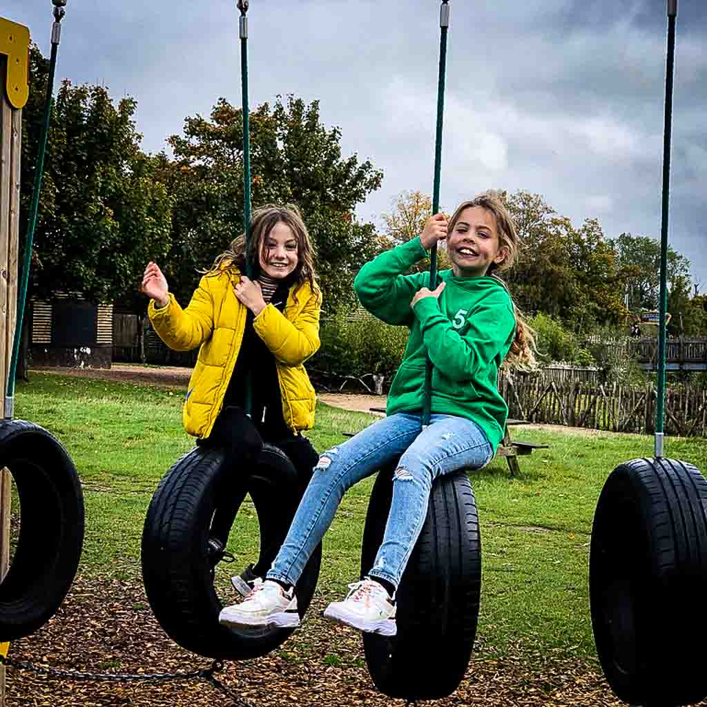 Two Young Girls On Tyre Swings
