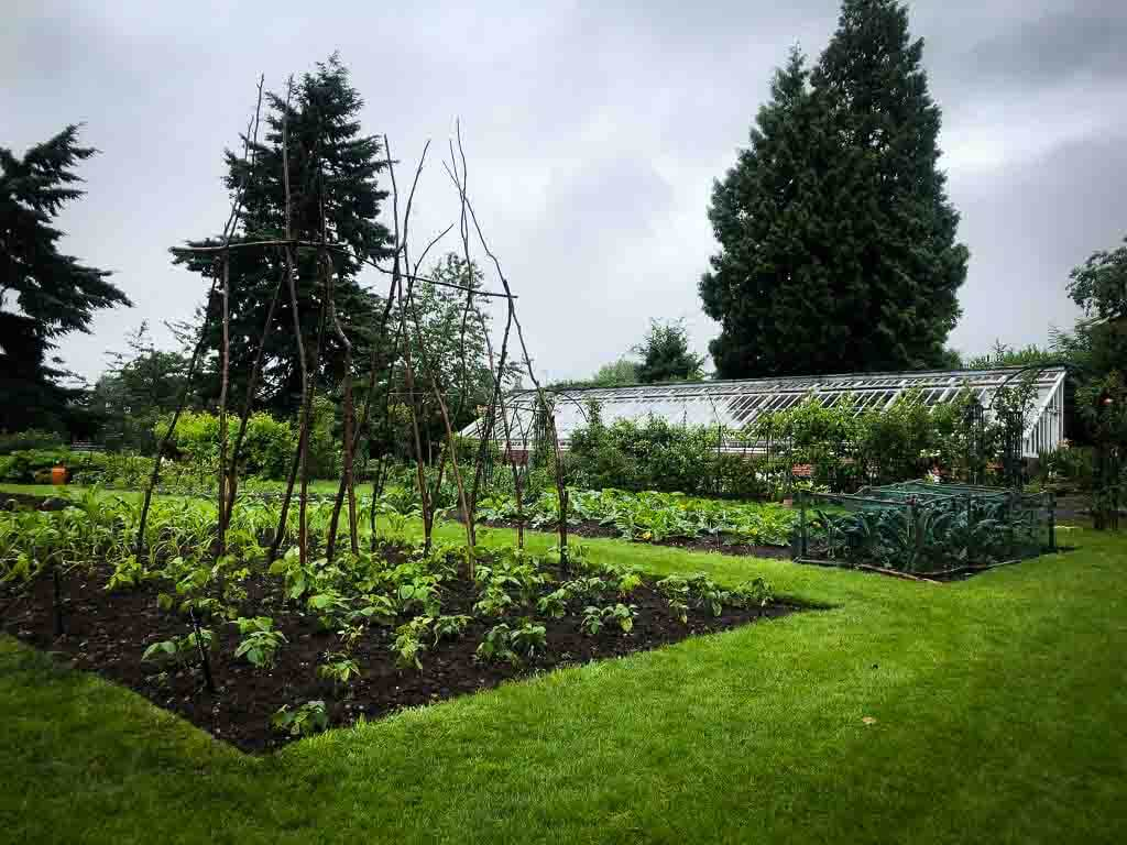 Vegetable Garden At Wightwick Manor