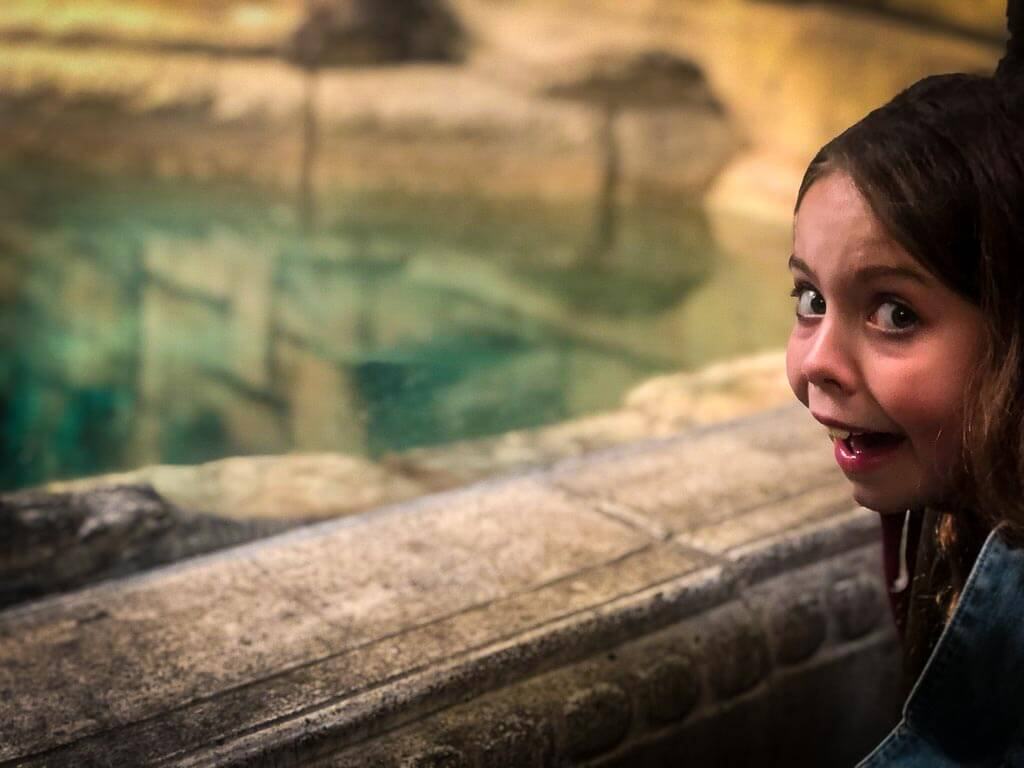 girl with scared face looking at a crocodile in a tank