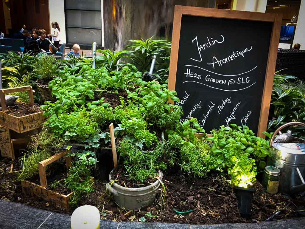 herb garden at the sofitel gatwick airport hotel