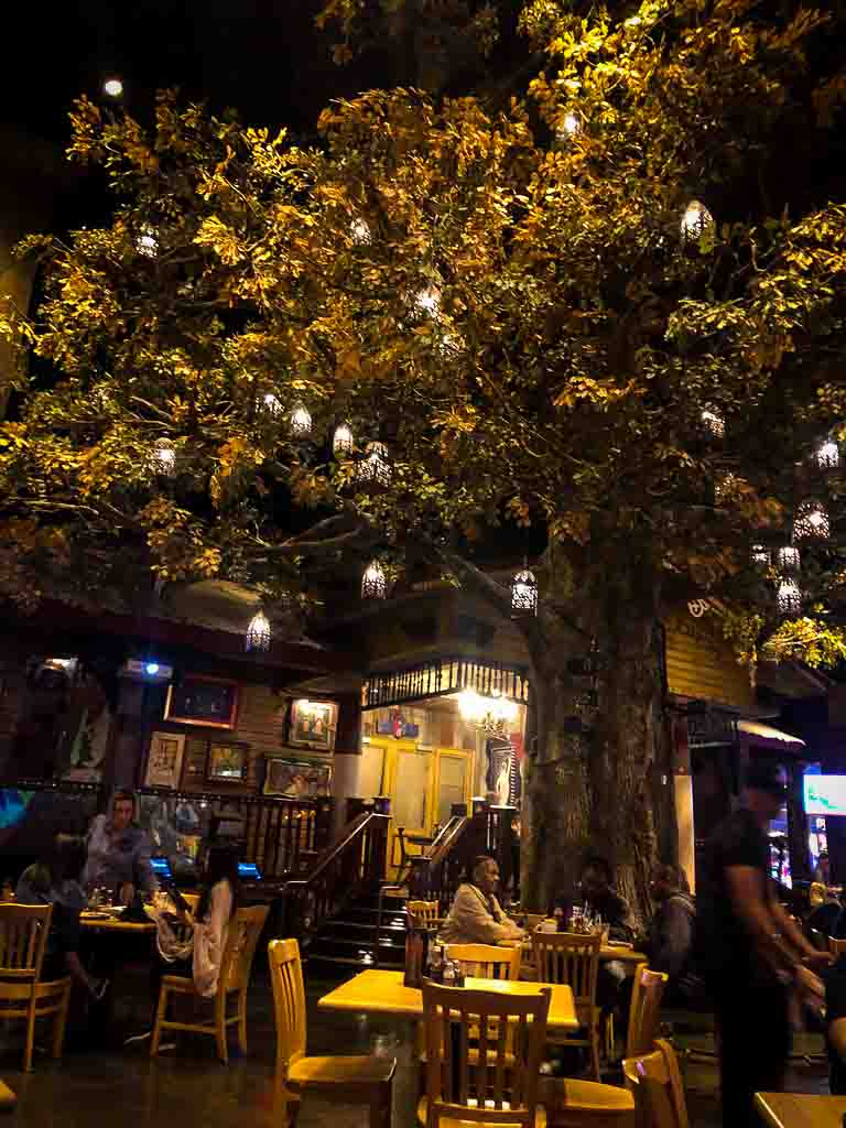 large tree indoors at House of Blues in Las Vegas
