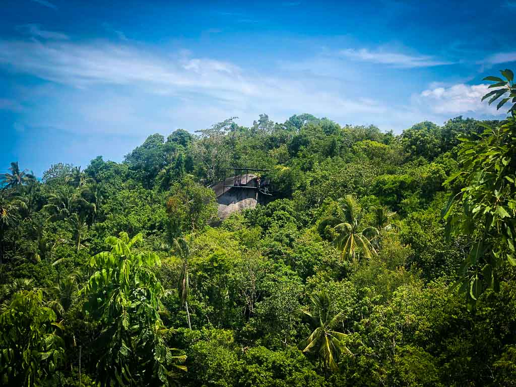 jungle zipline as seen from the lai viewpoint under a blue sky