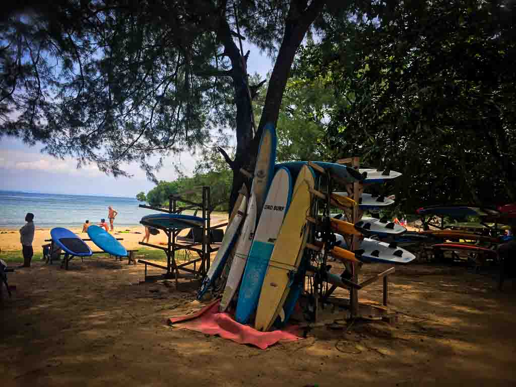 surf boards resting against a tree on Nusa Dua beach