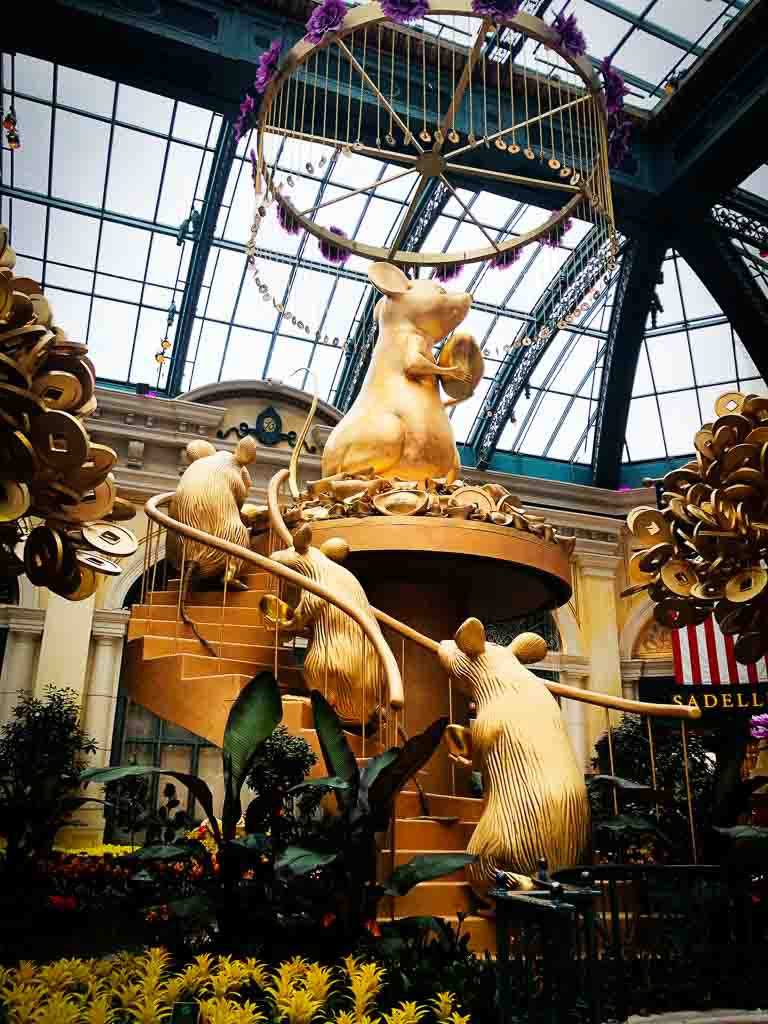 celebrating year of the rat with a huge gold rat at the bellagio